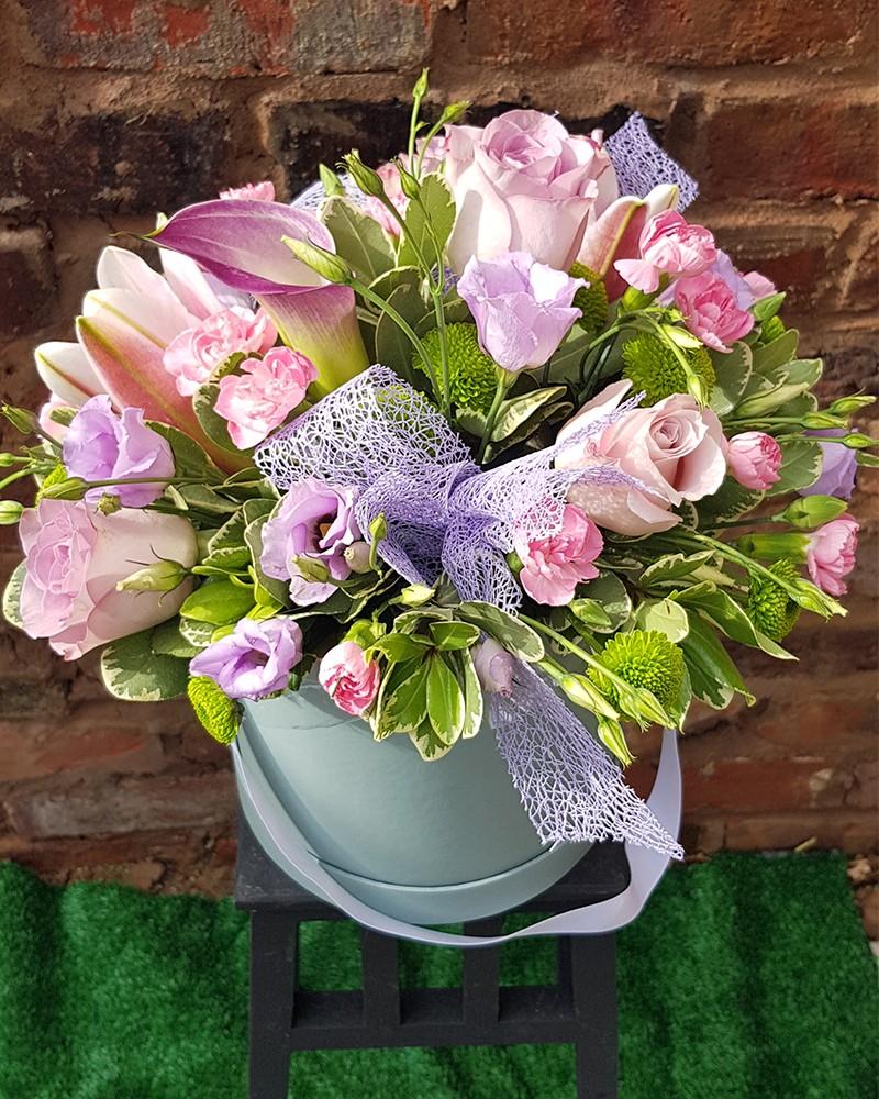 Gorgeous Lilac